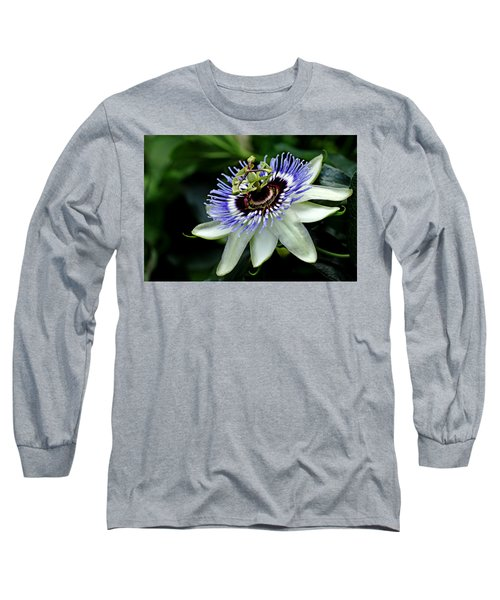 Blue Crown Passion Flower Long Sleeve T-Shirt by Debbie Oppermann