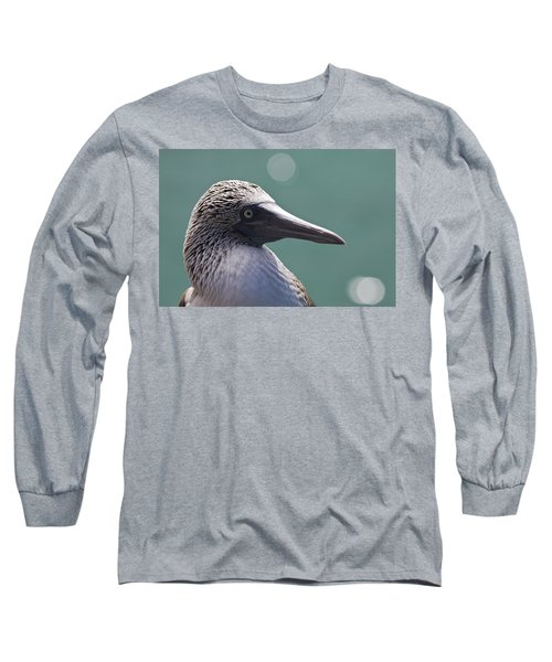 Blue Footed Booby II Long Sleeve T-Shirt by Dave Fleetham