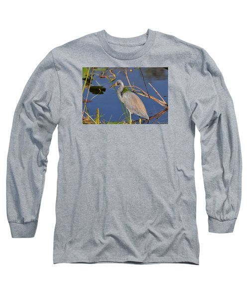 Blue Heron Long Sleeve T-Shirt by Helen Haw