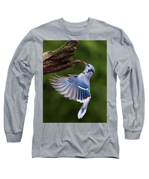 Long Sleeve T-Shirt featuring the photograph Blue Jay In Flight by Mircea Costina Photography