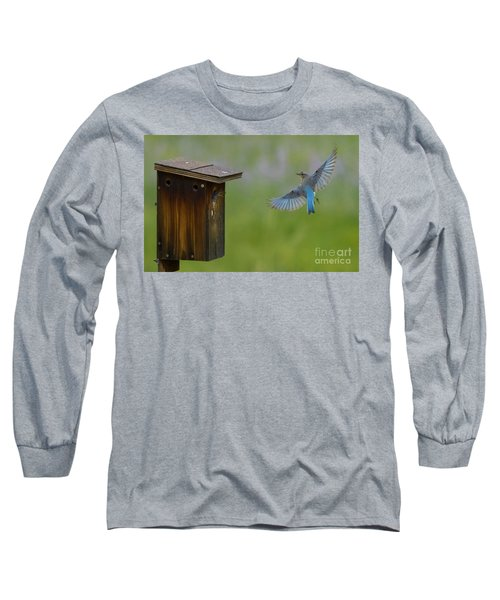 Bluebird Feeding Time Long Sleeve T-Shirt