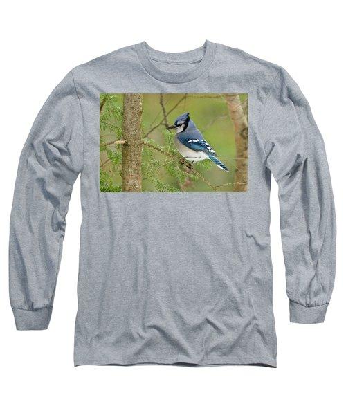 Bluejay 013 Long Sleeve T-Shirt