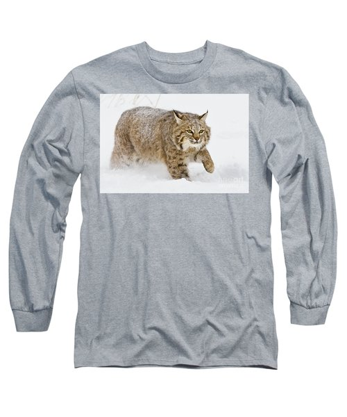 Bobcat In Snow Long Sleeve T-Shirt by Jerry Fornarotto