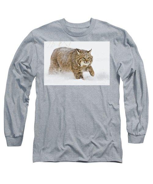Bobcat In Snow Long Sleeve T-Shirt