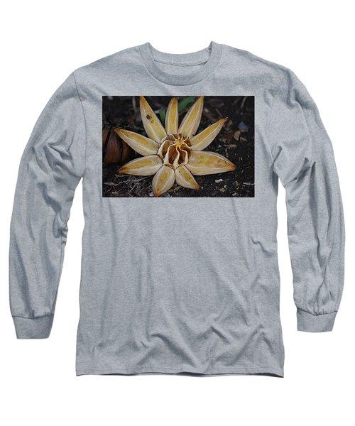 Botanical Garden Seed Pod Long Sleeve T-Shirt by Lori Seaman