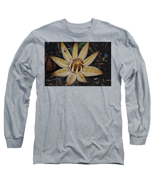 Botanical Garden Seed Pod Long Sleeve T-Shirt