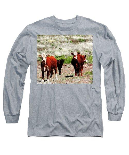 Bovine Long Sleeve T-Shirt