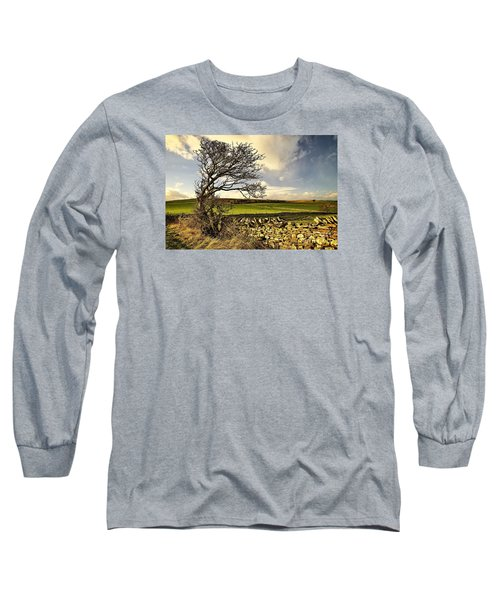 Bowing To The Wind Long Sleeve T-Shirt