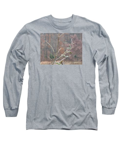 Branches In Ice Long Sleeve T-Shirt by Craig Walters
