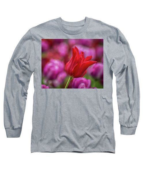 Long Sleeve T-Shirt featuring the photograph Brazenly Delicate by Bill Pevlor