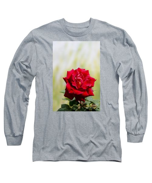 Bright Red Rose Long Sleeve T-Shirt