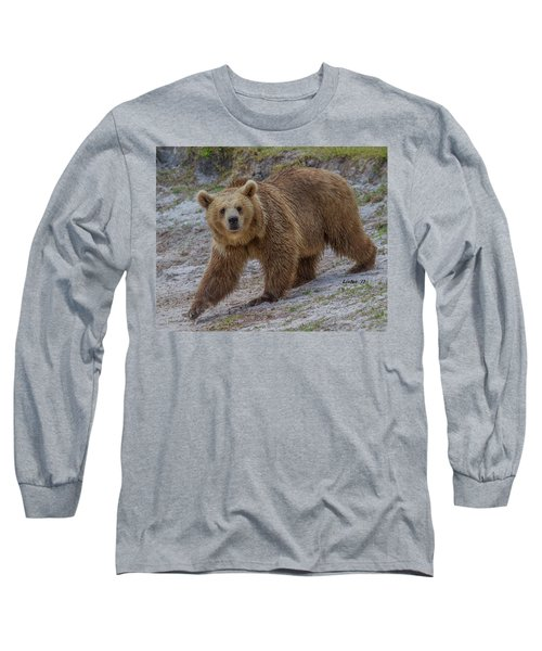 Brown Bear 3 Long Sleeve T-Shirt