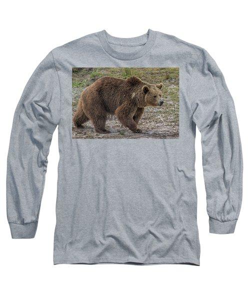 Brown Bear 6 Long Sleeve T-Shirt