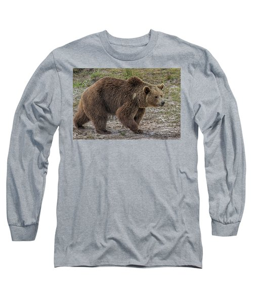 Brown Bear 6 Long Sleeve T-Shirt