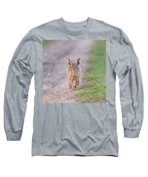 Brown Hare Approaching Down Track Long Sleeve T-Shirt