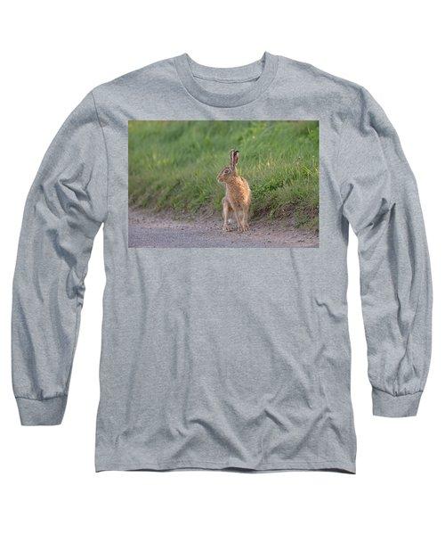 Brown Hare Listening Long Sleeve T-Shirt