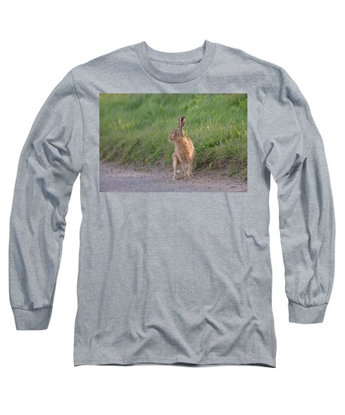 Brown Hare Listening Long Sleeve T-Shirt