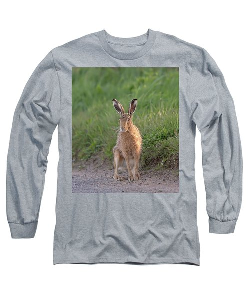 Brown Hare Sat On Track At Dawn Long Sleeve T-Shirt