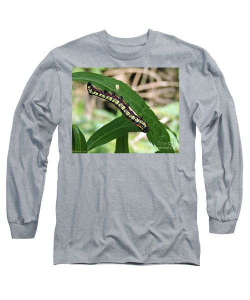 Long Sleeve T-Shirt featuring the photograph Brown Hooded Owlet Moth Larva  by Gena Weiser