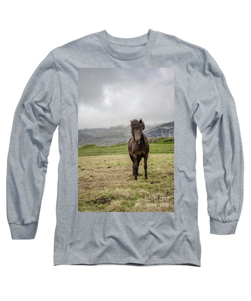 Long Sleeve T-Shirt featuring the photograph Brown Icelandic Horse by Edward Fielding