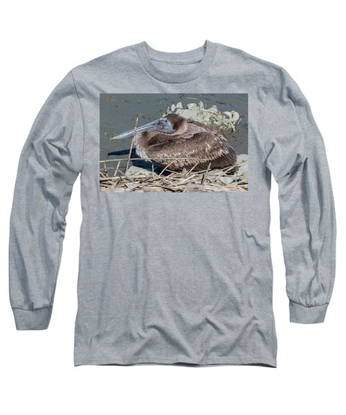 Brown Pelican 3 March 2018 Long Sleeve T-Shirt