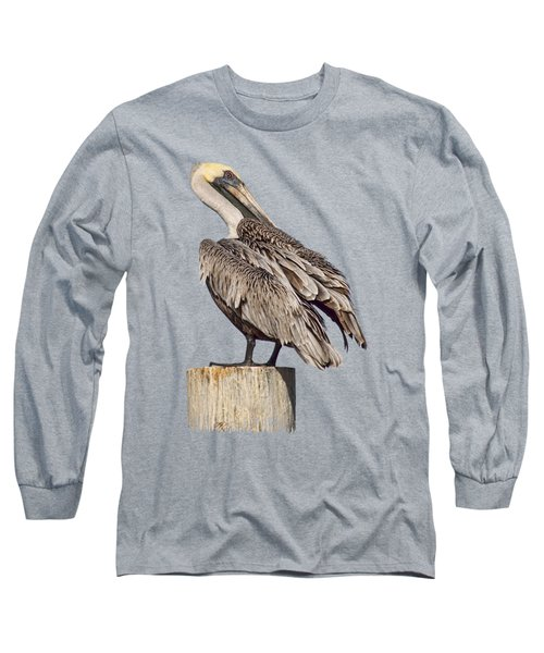 Brown Pelican - Preening - Transparent Long Sleeve T-Shirt by Nikolyn McDonald