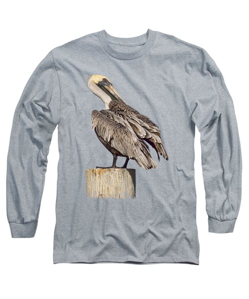 Brown Pelican - Preening - Transparent Long Sleeve T-Shirt