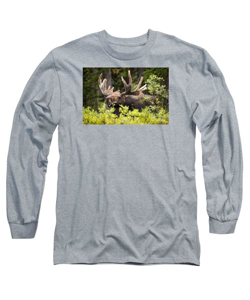 Browser Long Sleeve T-Shirt by Aaron Whittemore
