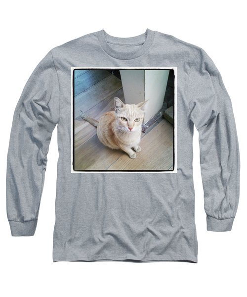 Long Sleeve T-Shirt featuring the photograph Brunch Companion. I Couldn't Resist by Mr Photojimsf