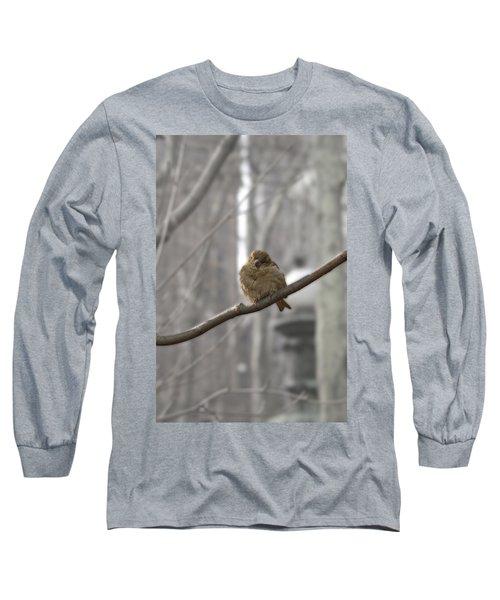 Bryant Park Bird Nyc Long Sleeve T-Shirt by Henri Irizarri