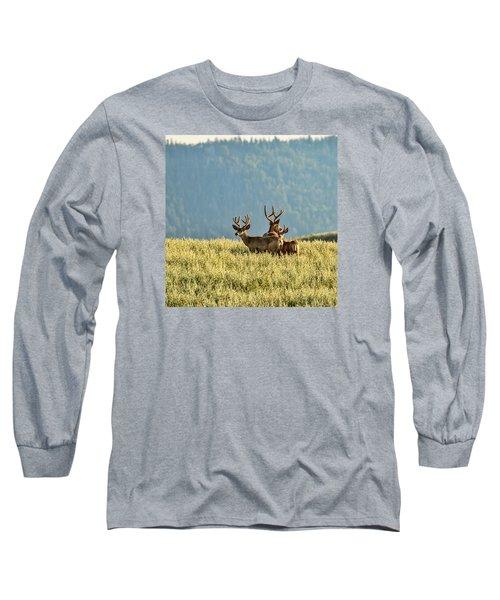 Buck Mule Deer In Velvet Long Sleeve T-Shirt by Daniel Hebard