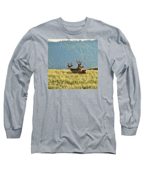 Buck Mule Deer In Velvet Long Sleeve T-Shirt