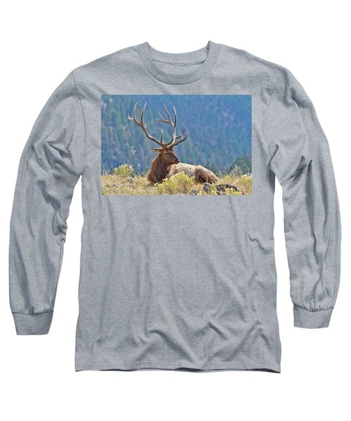 Bull Elk Resting Long Sleeve T-Shirt