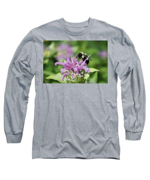 Bumblebee On Bee Balm Long Sleeve T-Shirt