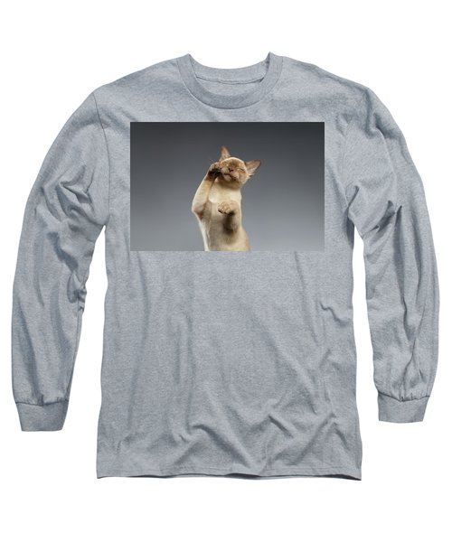 Burma Cat Paws Snout Covers On Gray Long Sleeve T-Shirt
