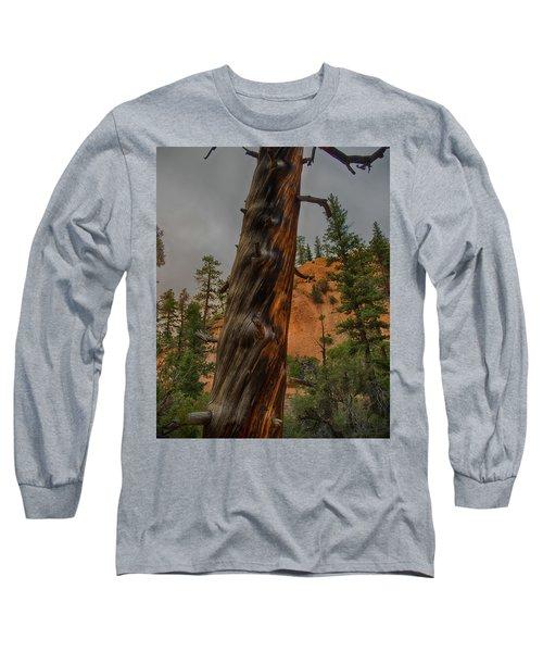 Burned Long Sleeve T-Shirt