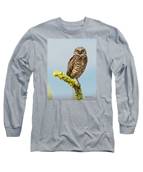 Burrowing Owl On Mullein Plant Long Sleeve T-Shirt by Stephen  Johnson