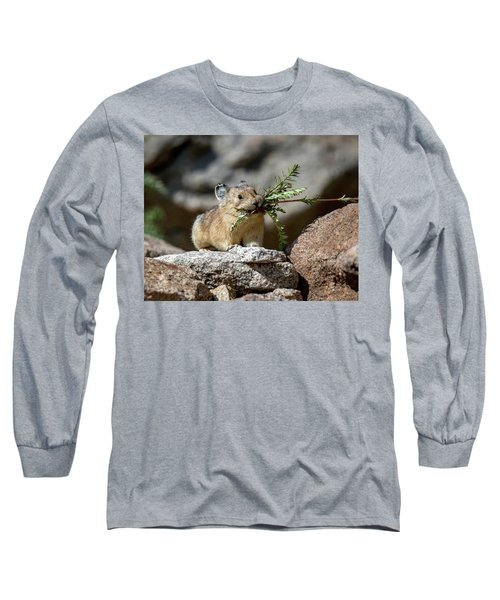 Busy As A Pika Long Sleeve T-Shirt