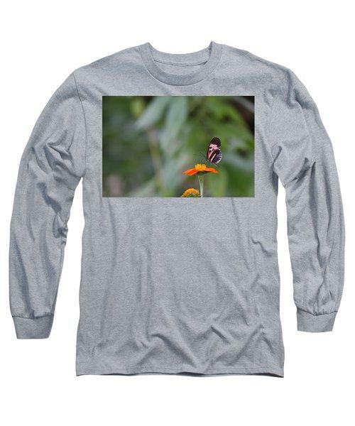 Butterfly 16 Long Sleeve T-Shirt