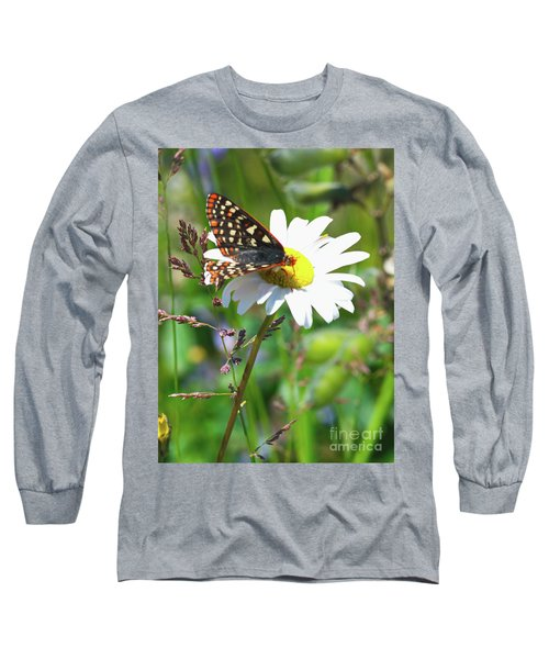 Butterfly On A Wild Daisy Long Sleeve T-Shirt by Ansel Price