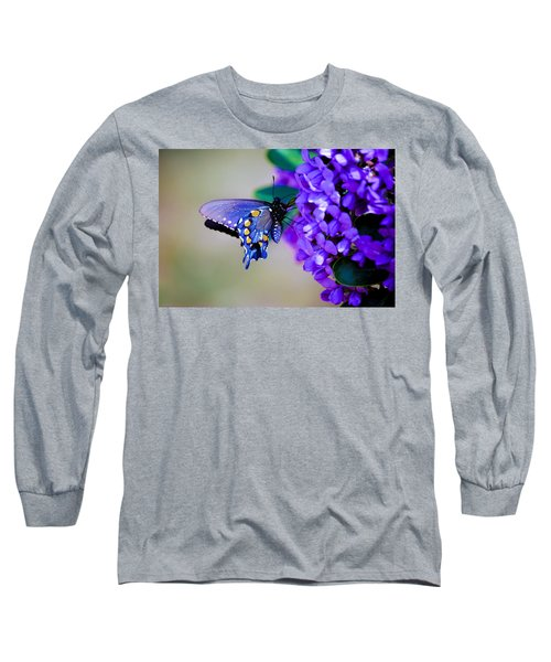 Butterfly On Mountain Laurel Long Sleeve T-Shirt by Debbie Karnes
