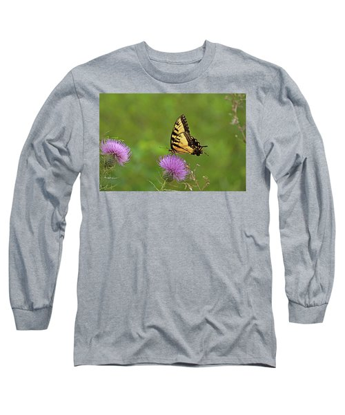 Long Sleeve T-Shirt featuring the photograph Butterfly On Thistle by Sandy Keeton