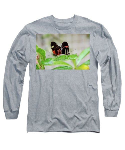 Butterfly Pair Long Sleeve T-Shirt