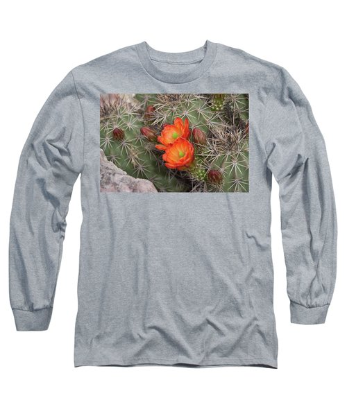 Cactus Blossoms Long Sleeve T-Shirt by Monte Stevens