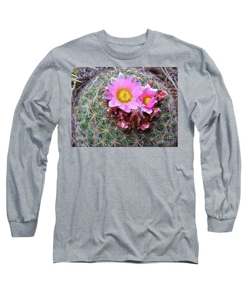 Cactus Flower  Long Sleeve T-Shirt by Alan Johnson