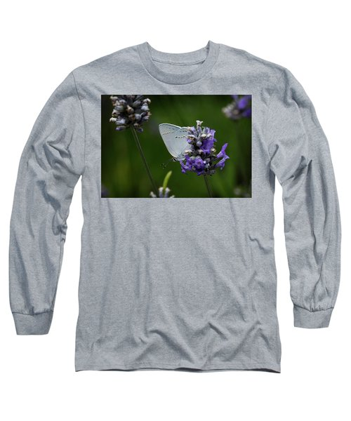 California Hairstreak Butterfly Long Sleeve T-Shirt