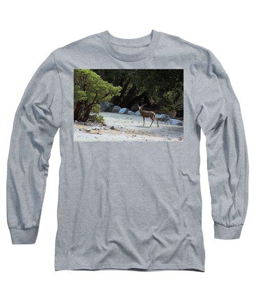 California Mule Deer Long Sleeve T-Shirt by Viktor Savchenko