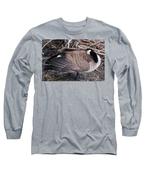 Canada Goose Asleep Long Sleeve T-Shirt by Edward Peterson