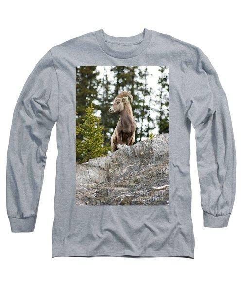 Canadian Bighorn Side Profile Long Sleeve T-Shirt