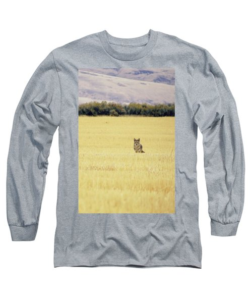 Canidae Long Sleeve T-Shirt